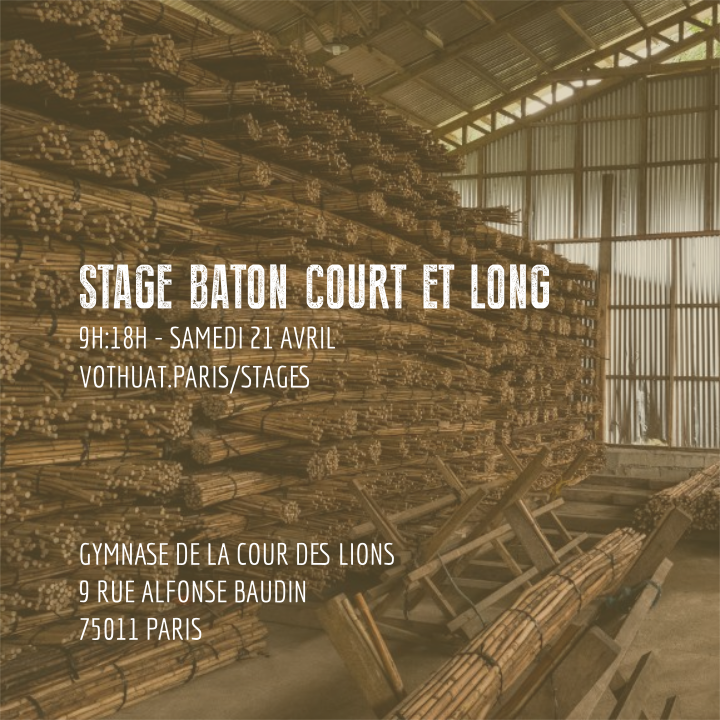 Stage bâton court et long paris vo thuat club avril 2018